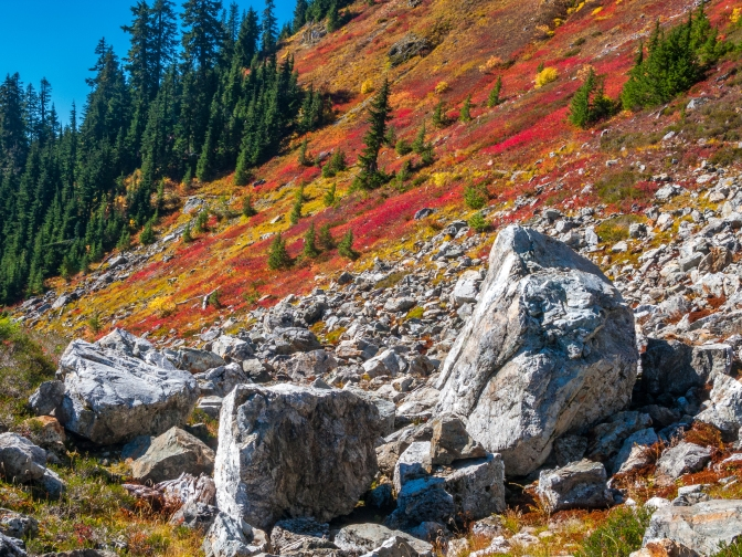 Fall on the Yellow Aster Butte trail